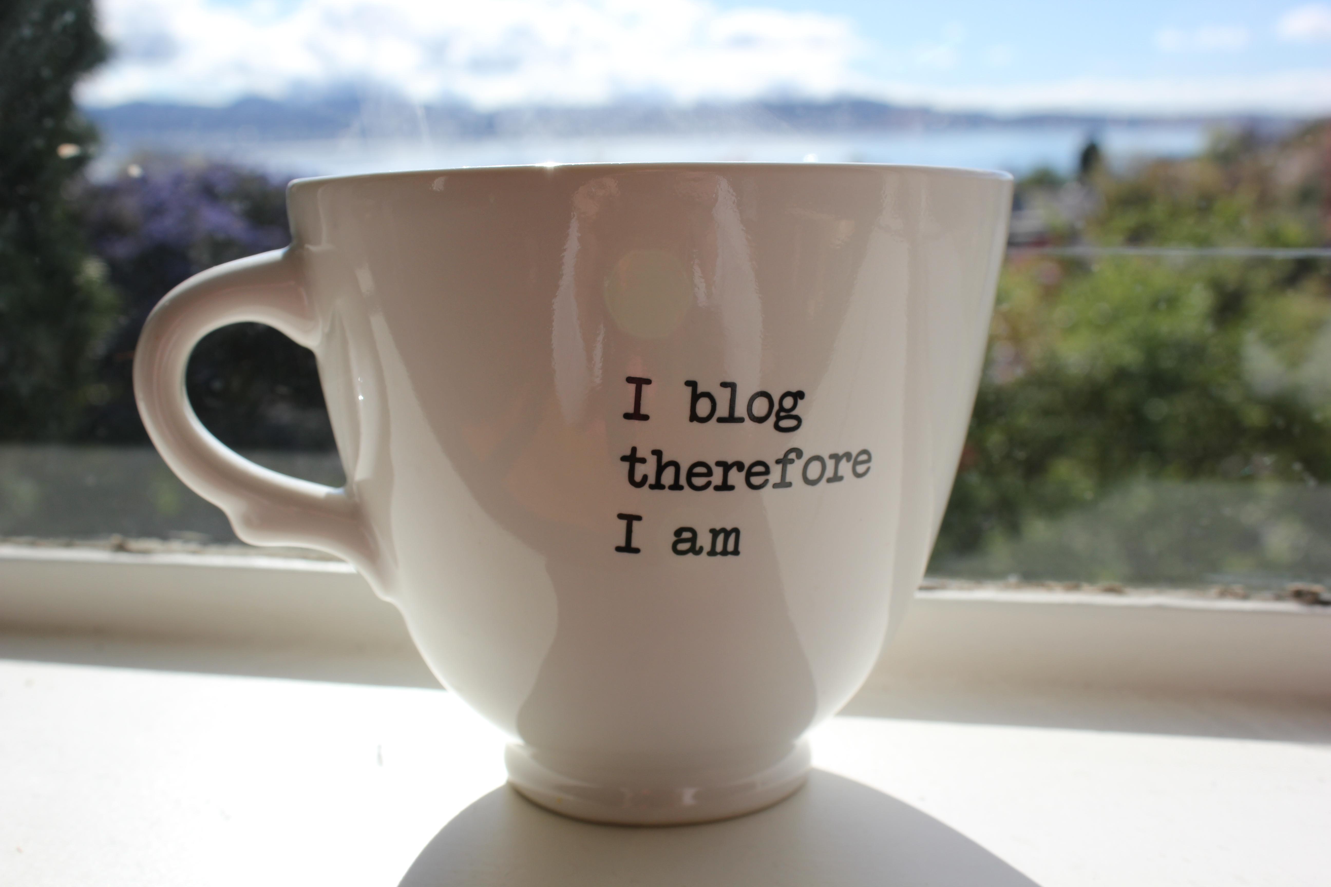 Bloger protiv blogera
