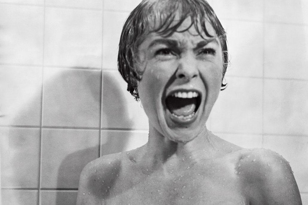 Psycho shower scene kittens